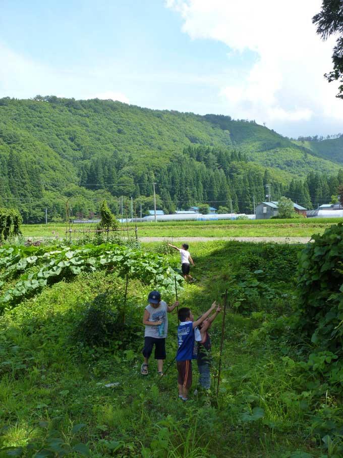 若畑集落で遊ぶ子どもたち