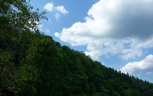 平元家から見える景色