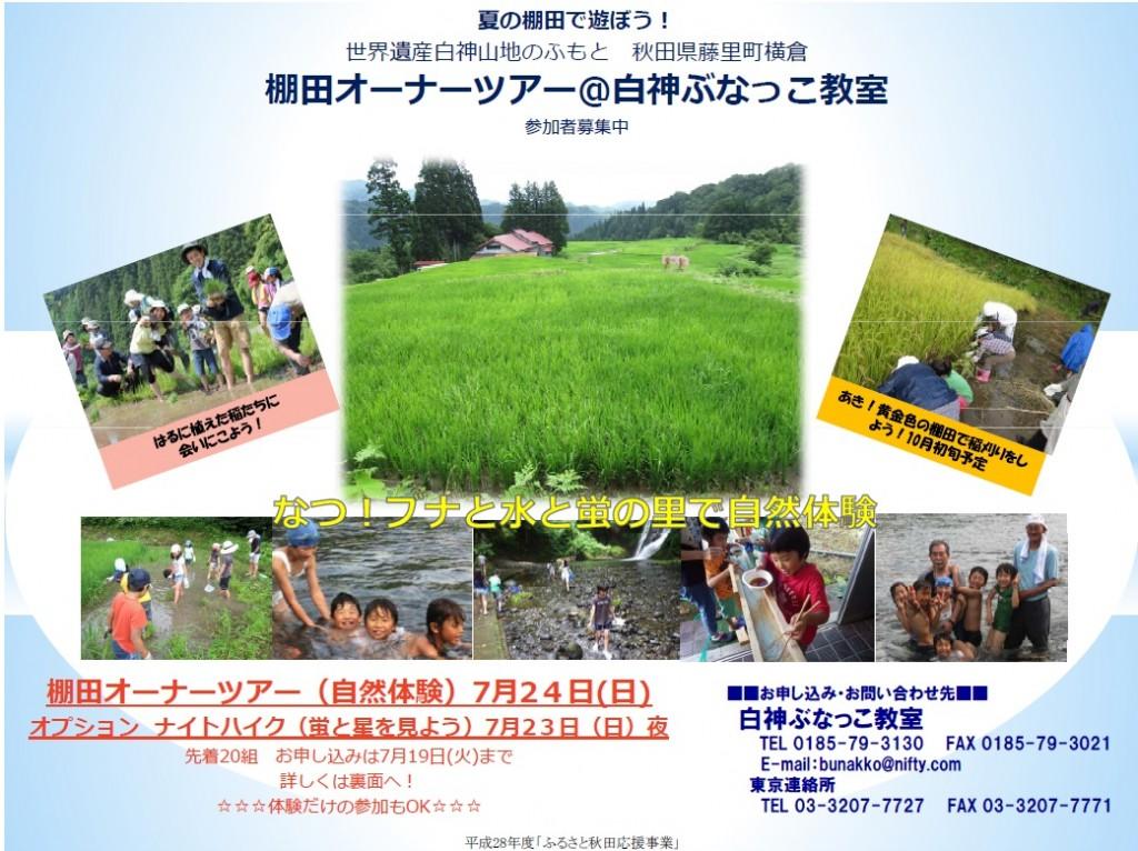 【棚田オーナーツアー】藤里町横倉地区なつ!ブナと水と蛍の里で自然体験
