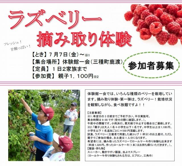 s-ichie_raspberry2017